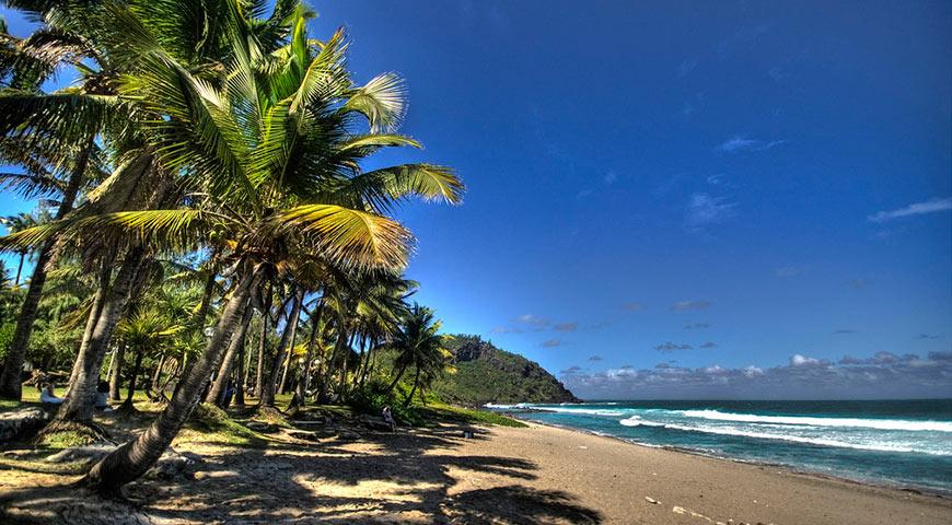 Qu'est-ce qui attire les touristes à la Réunion?